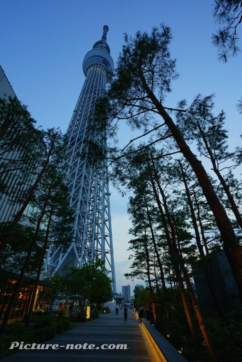 東京スカイツリー スカイアリーナ入口